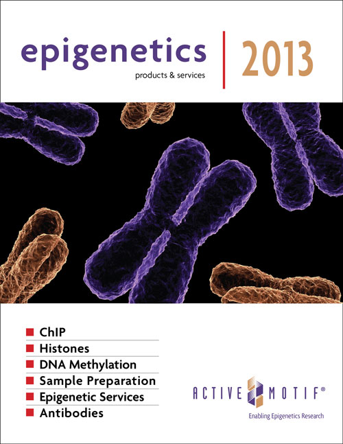 Active Motif's Epigenetics Products & Services 2013 brochure