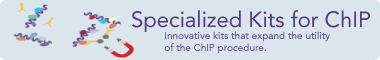 Specialized ChIP Kits