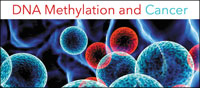 DNA Methyaltion & Cancer eBook