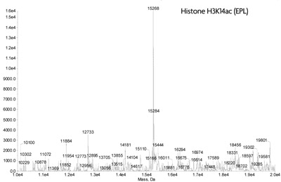 ESI-TOF mass spectrometry of Recominant Histone H3K14ac (EPL)
