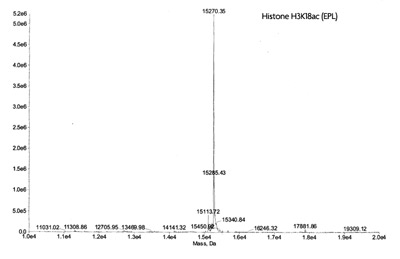 ESI-TOF mass spectrometry of Recominant Histone H3K19ac (EPL)