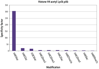 Graphical analysis of histone H3K4me2 antibody array