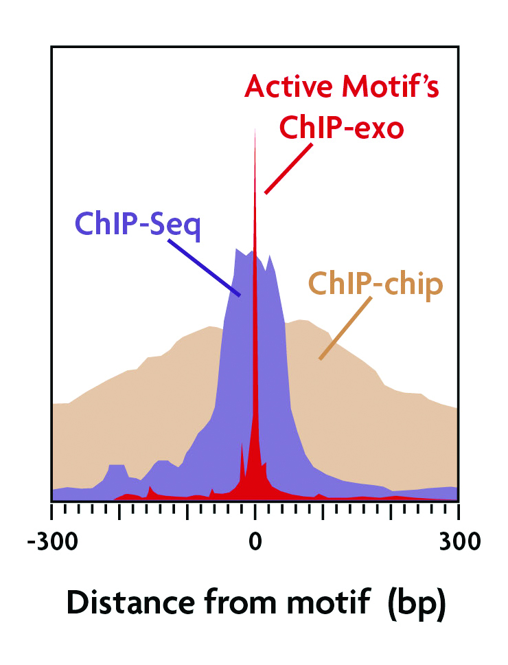 ChIP-exo improves resolution of protein-DNA binding sites.