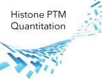 Histone H3 PTM Multiplex Assay Services