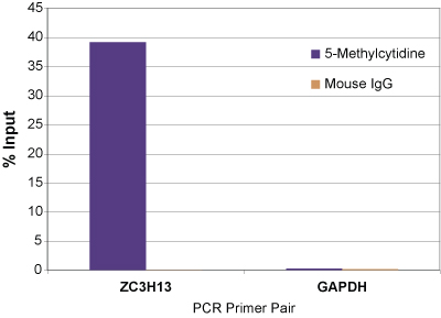MeDIP real time PCR results with ZC3H13 and GAPDH primer sets