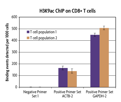 PBMC ChIP on CD8+ T Cells