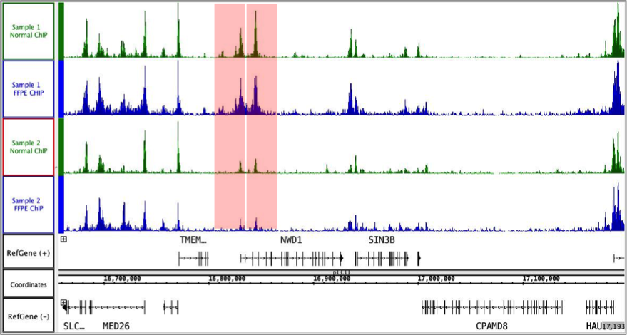 ChIP-Seq performed using antibodies against H3K27ac and H3K27me3
