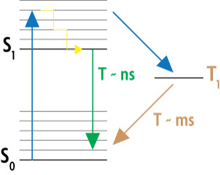 Simplified Jablonski diagram of the GSDIM method