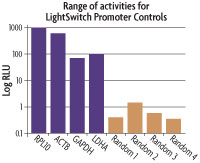 Positive & negative LightSwitch Promoter Control Vectors