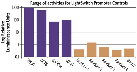 Diagram depicting the luciferase activity of the positive and negative LightSwitch Promoter Controls