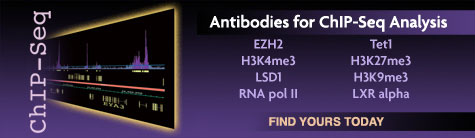Antibodies for ChIP-Seq from Active Motif