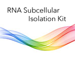 RNA Subcellular Isolation Kit