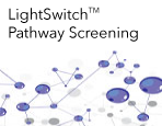 LightSwitch™ Pathway Screening Services