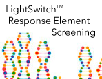 LightSwitch™ Response Element Screening Services