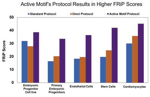 Active Motif's optimized ATAC-Seq protocol results in increased FRiP scores