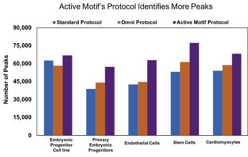 Active Motif's optimized ATAC-Seq protocol results in increased number of peaks
