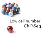 Low Cell Number ChIP-Seq Services