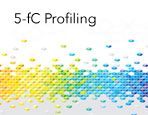 5-fC Profiling Services
