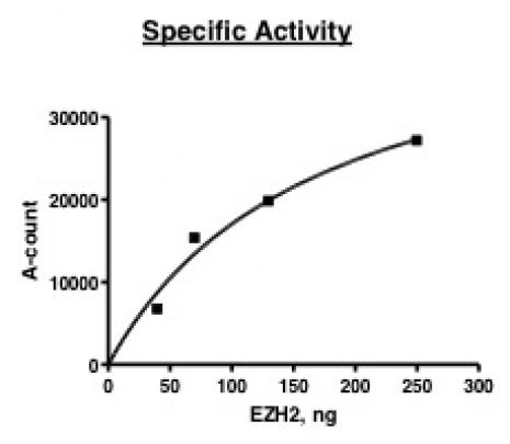 EZH2 activity assay