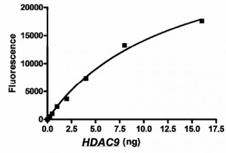 HDAC9 activity assay