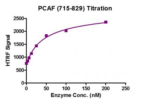Recombinant KAT2B / PCAF (715-829) protein activity assay.
