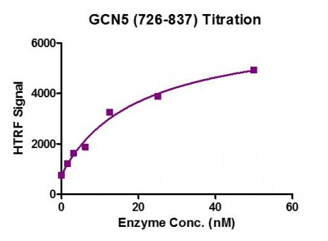 HTRF Assay for Recombinant KAT2A (GCN5) (726-837) protein activity.