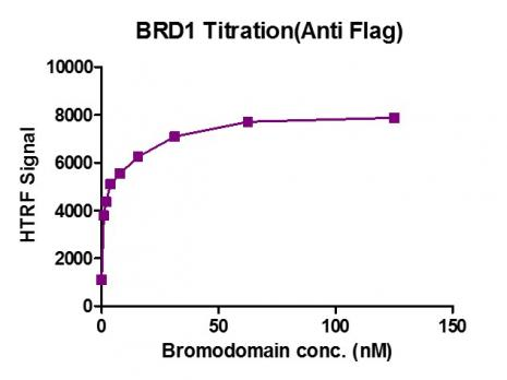 HTRF Assay for BRD1 (556-688) activity.