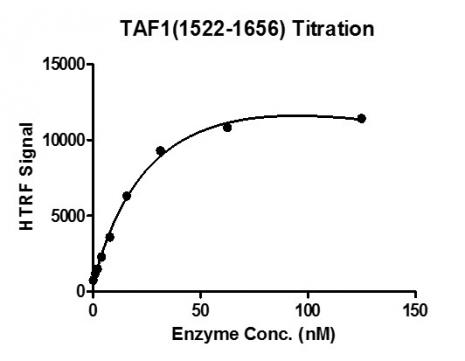 Recombinant TAF1 (1522-1656) protein activity assay.