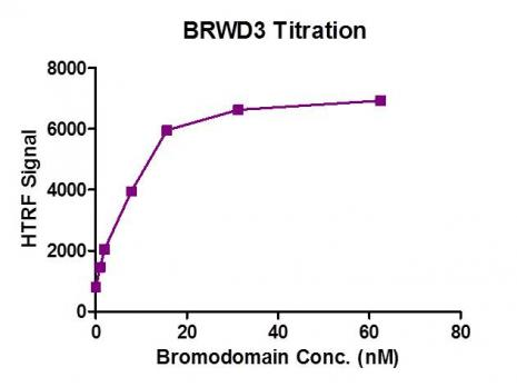 BRWD3 (1295-1443) protein activity assay