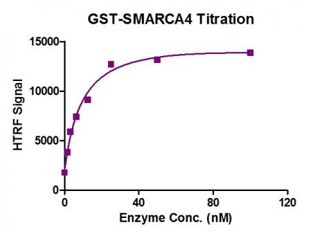 SMARCA4 / BRG1 (1448-1569) HTRF activity assay