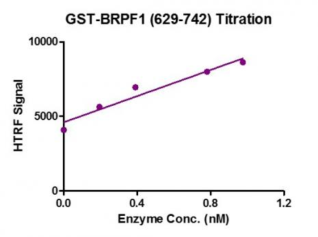 HTRF assay for BRPF1 (629-742), GST-Tag activity