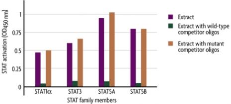 Figure 1: Monitoring STAT Family member activation using the TransAM STAT Family Kit.