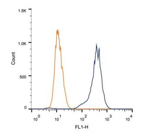 ATF-6 antibody (mAb) tested by flow cytometry.