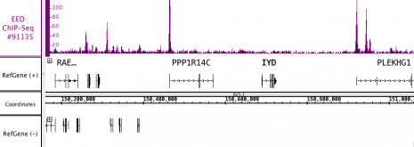 AbFlex<sup>®</sup> EED antibody (rAb) tested by ChIP-Seq.